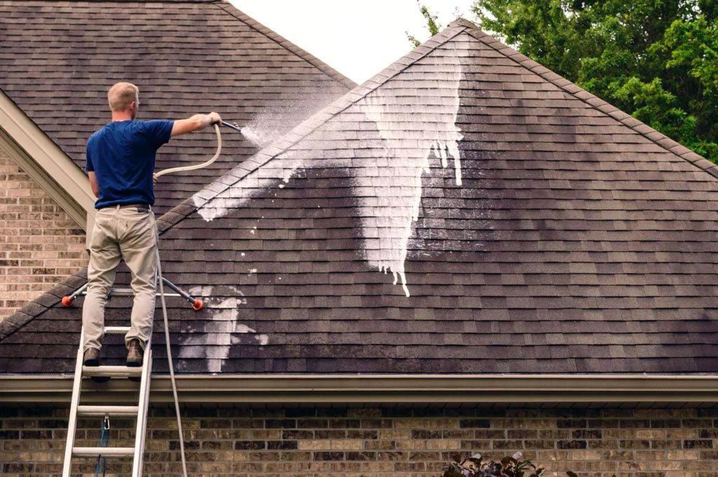 roof cleaning davenport